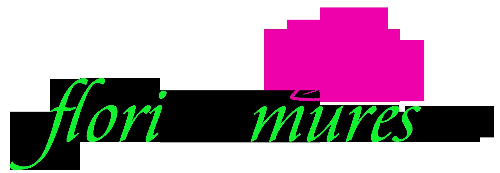 Flori in Mures – Florarie online Targu Mures