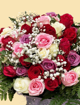 Trandafirii Preferati