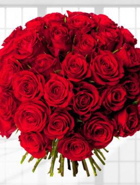 Buchet de 41 trandafiri rosii