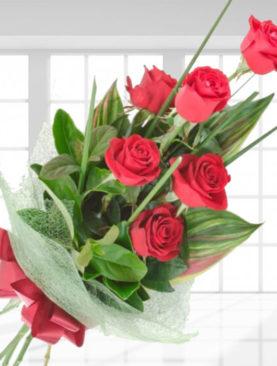 6 Trandafiri Rosii