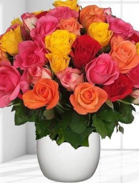 Buchet cu 31 trandafiri multicolori