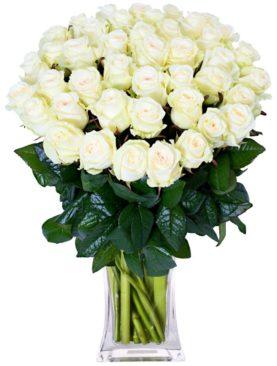 Buchet de 55 trandafiri albi