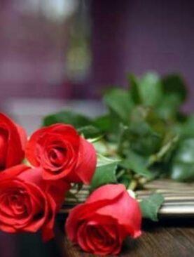 Trandafiri Rosii - Cinci Dorinte