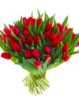 Buchet de lalele - Red Tulip